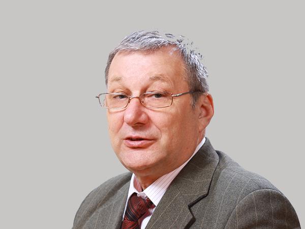 В.Н. Дейнего