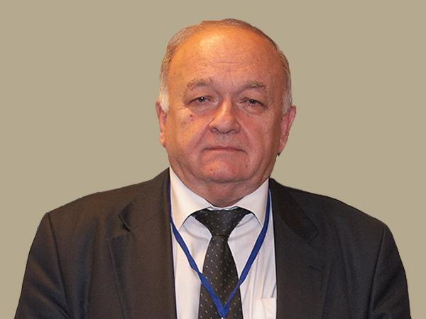 И.А. Ганин