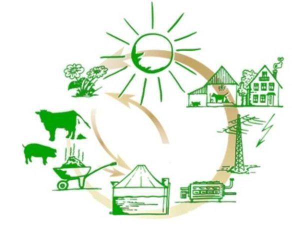 Сравнительный анализ  применения биогазовых технологий и других источников энергии // статья