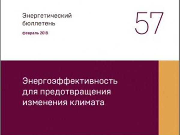 Аналитический центр при Правительстве РФ выпустил бюллетень «Энергоэффективность для предотвращения изменения климата».