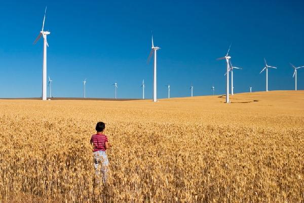 В Ставропольском крае выберут участки для строительства ветроэлектростанций
