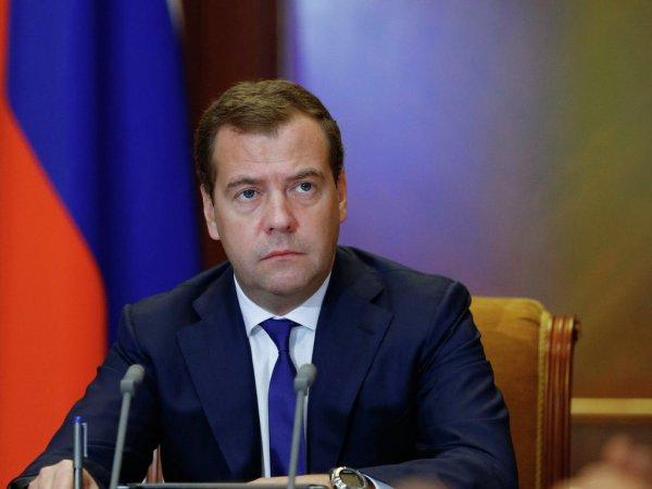 Медведев поручил представить предложения для продления поддержки ВИЭ-генерации