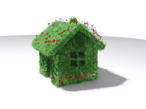 """Экологи предложили ввести в России господдержку для """"зеленых"""" технологий в строительстве"""