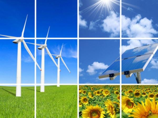 Россия богата источниками возобновляемой энергии, заявили в IRENA
